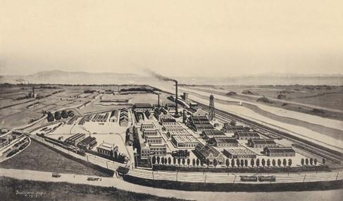 1919年 大日本セルロイド株式会社 創立